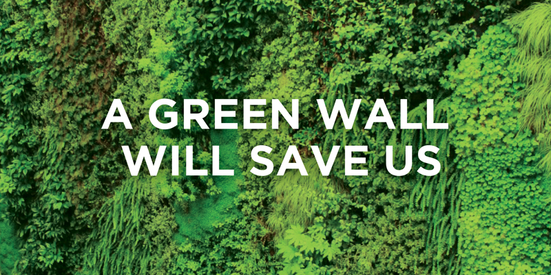 a-green-wall-will-save-us