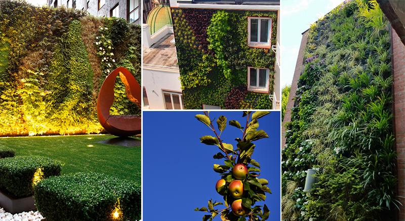 Giardini e pareti verticaly by Sandrini