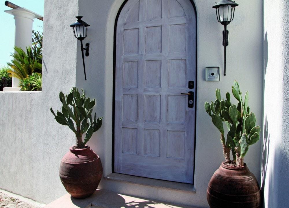 piante da ingresso esterno