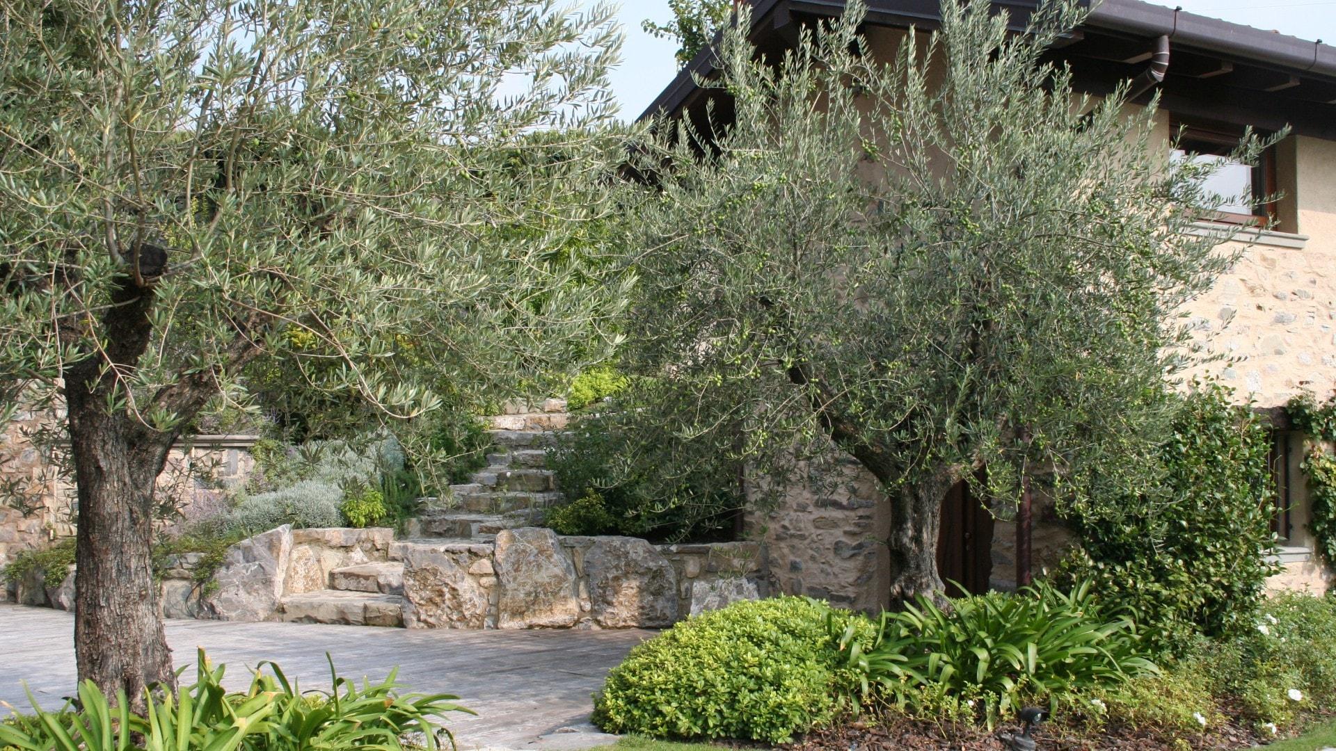 Lago d iseo tranquillit lacustre progettazione - Acquisto terra per giardino ...