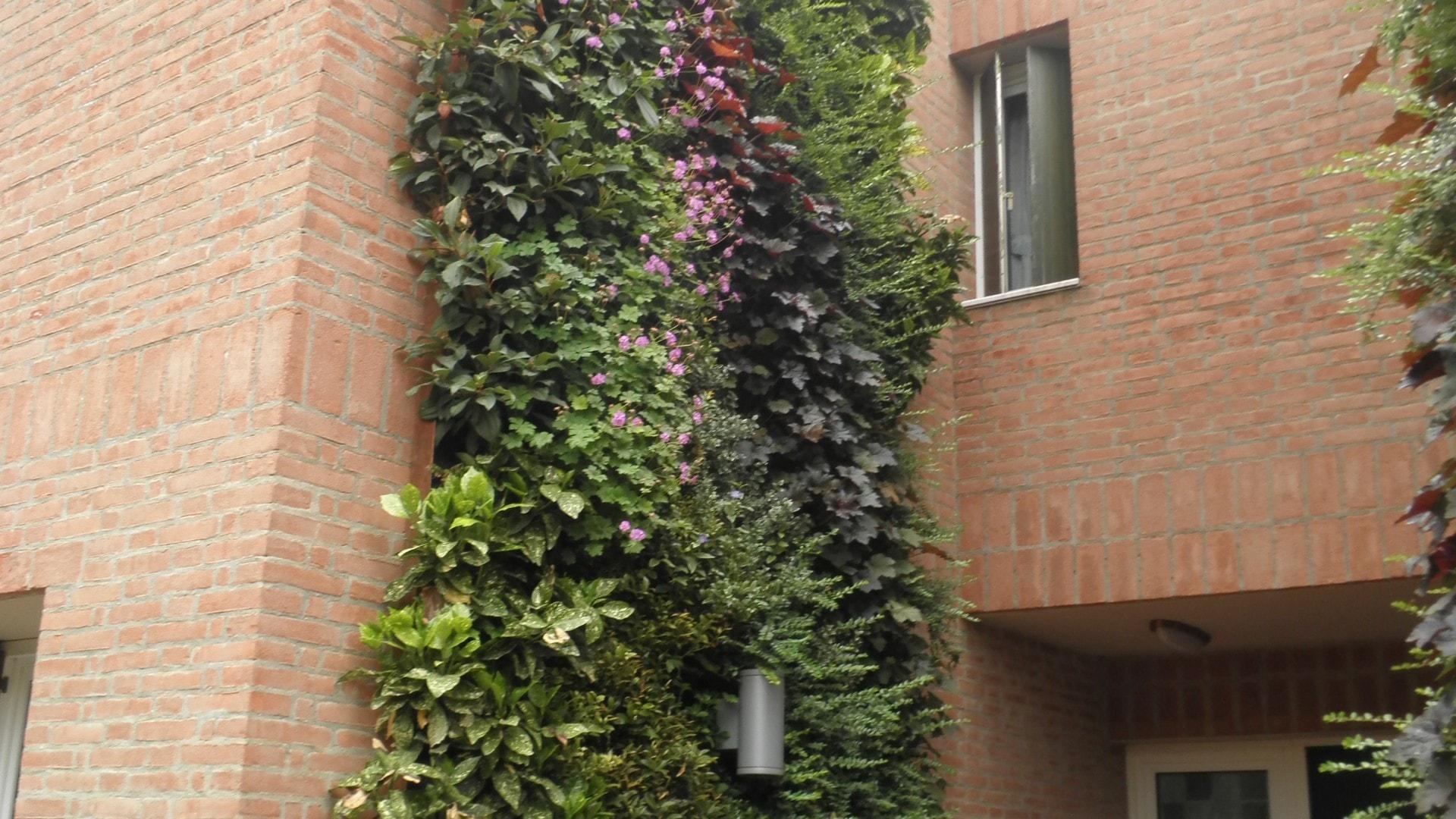 Pareti verdi brescia residenza privata sandrini for Pareti verdi verticali