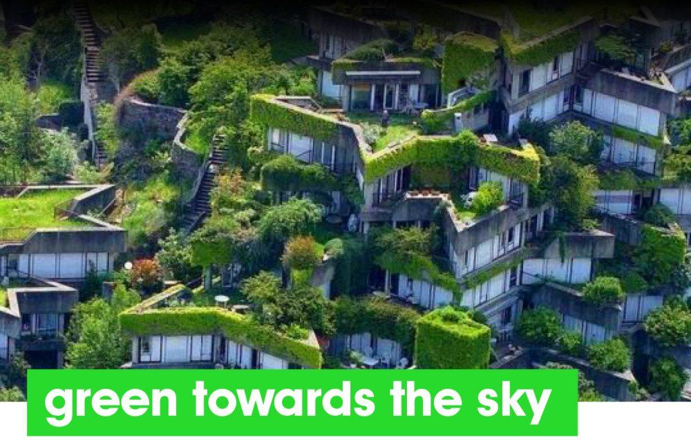 Green towards the sky