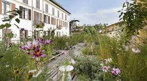 Orto fra i cortili è l'intervento realizzato sul tetto dell'edificio che ospita Piuarch, nel cuore di Brera a Milano.
