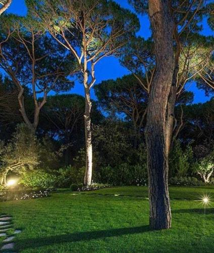 Realizzazione giardini progettazione giardini soluzioni di qualit per il tuo giardino - Il giardino segreto streaming ...