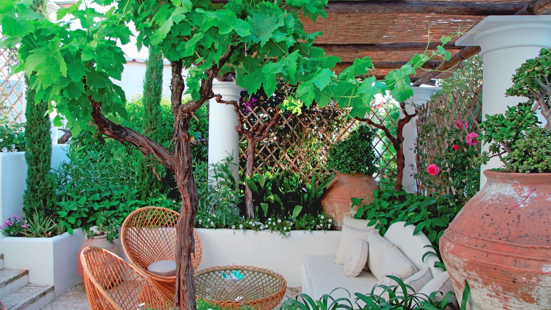 Terrazze a Capri. Il fascino di un giardino segreto - Progettazione ...