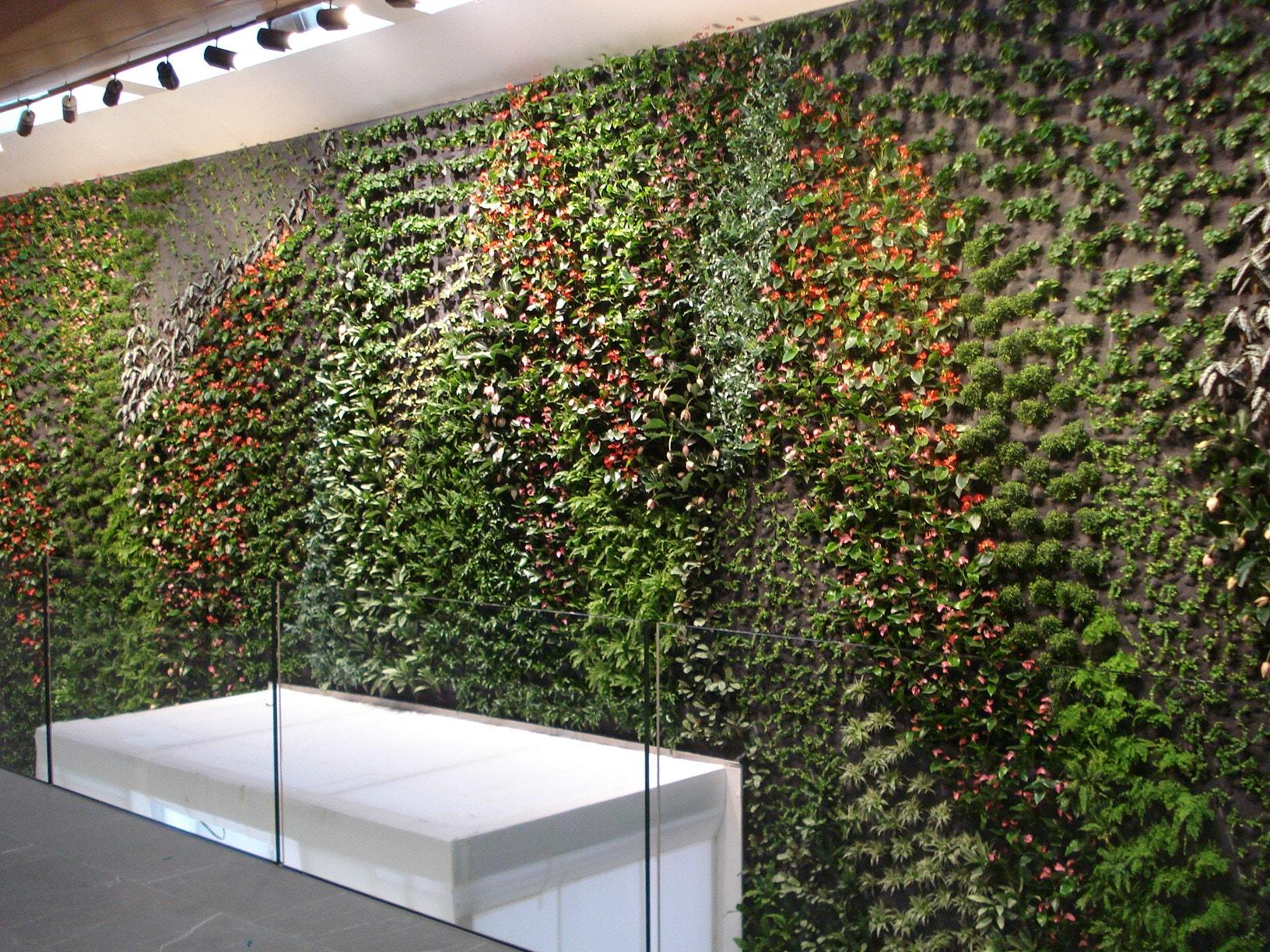 Vertical gardens - Garden design - Quality proposals for your Garden